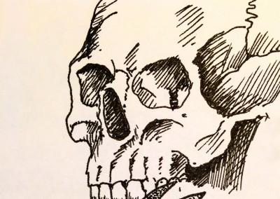 Skull, ink study