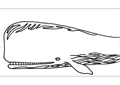 Whale Filigree