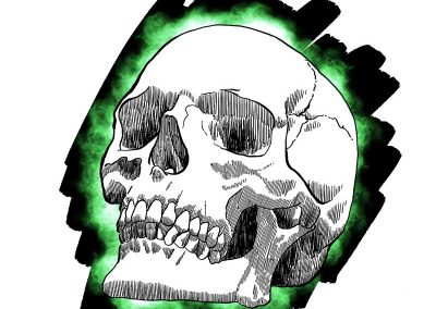 Skull study in green, digital